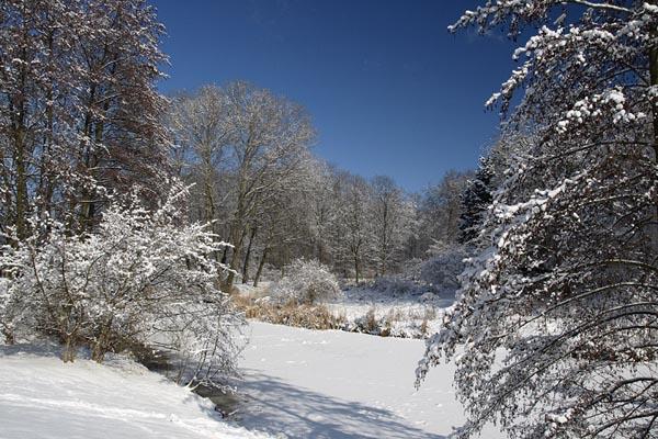 Zima w parku 4.