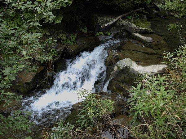 Gorski potok. Beskid Sadecki